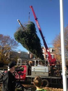 2016-11-19_christmas_tree_install